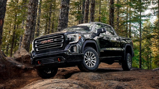 2020 Sierra AT4 Pickup Truck: Standing In The Woods Front View.
